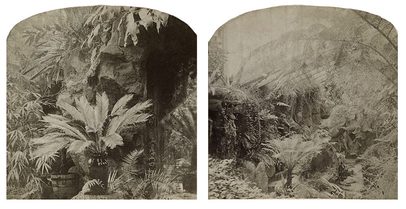 stereoviews